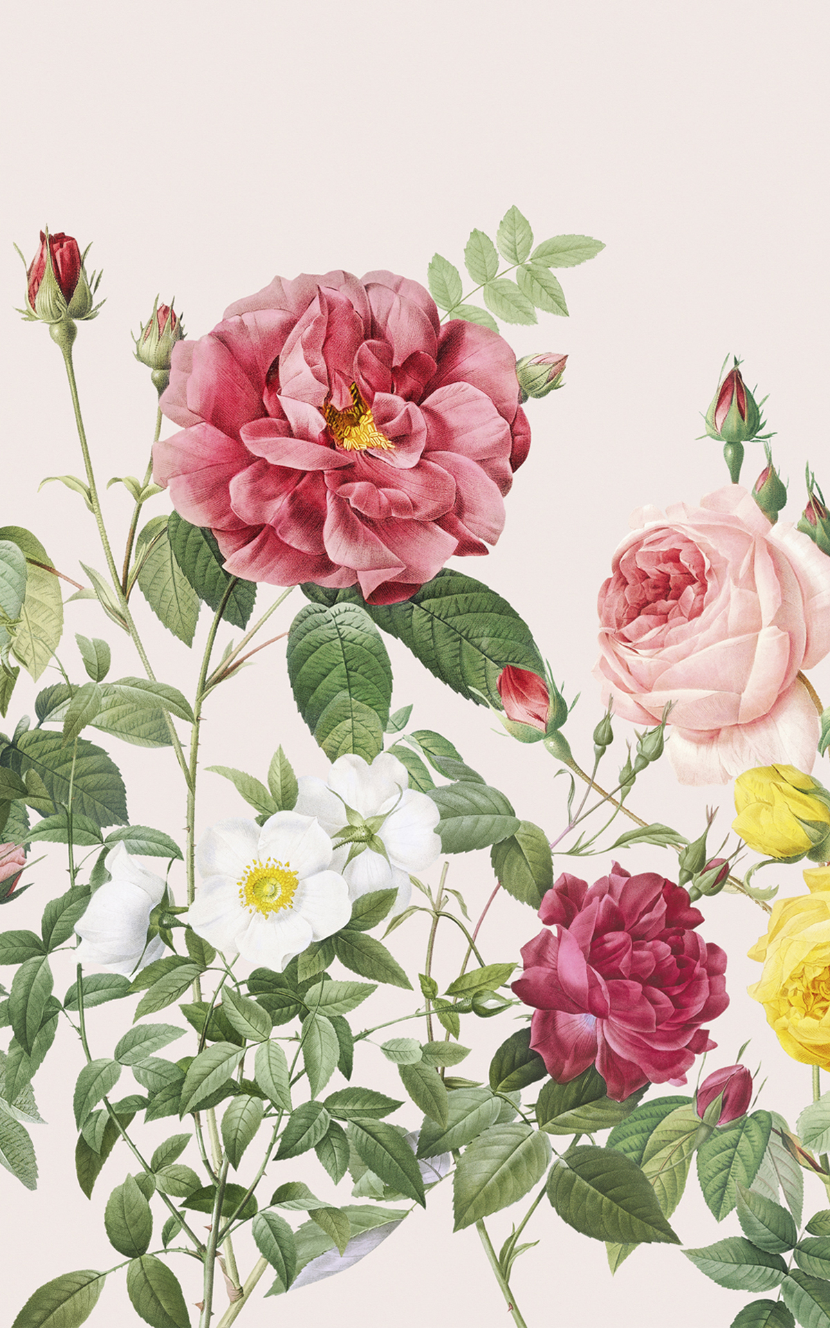 Pink Spring Flowers Vintage Floral Lovely Wallpaper Mural Product Image