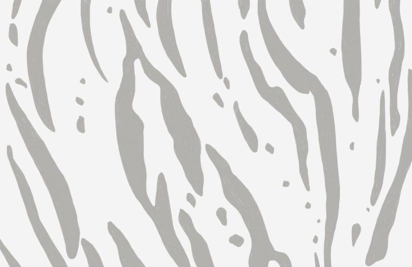 Grey Tiger Print Wallpaper Mural