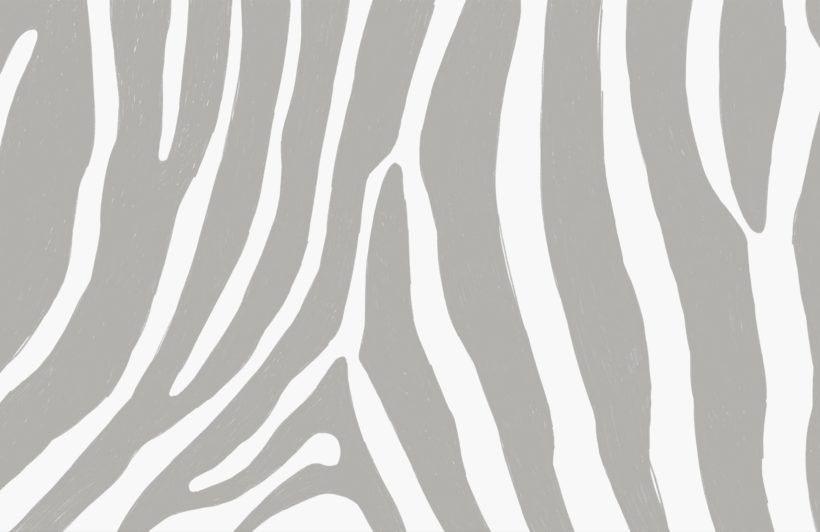 Grey Zebra Print Wallpaper Mural