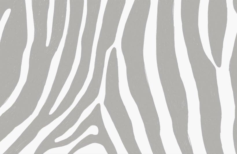 Grey Zebra Print Wallpaper Mural