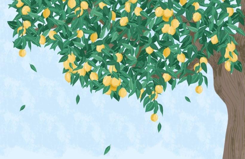 Lemon Tree Painterly Wallpaper Mural