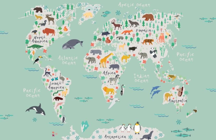 Safari Kids Map Wallpaper Mural