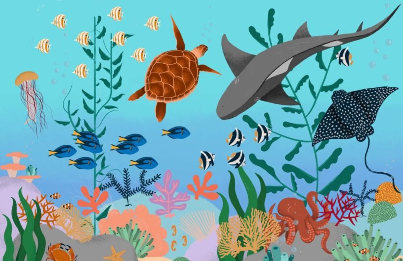 Under the Sea Children's Wallpaper