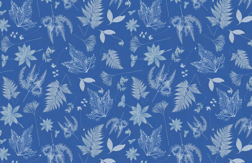 anna atkins the botanist product wall mural
