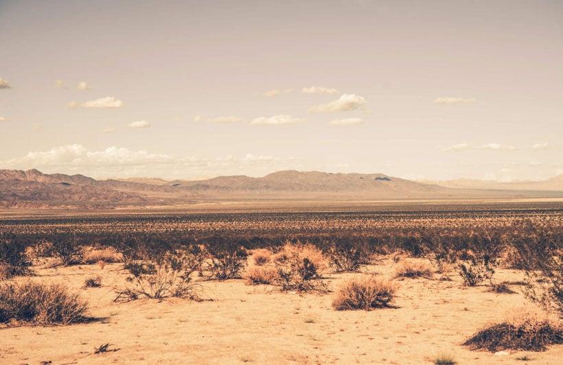 arid-desert-landscape-plain-wall-murals