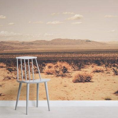 arid-desert-landscape-square-wall-murals