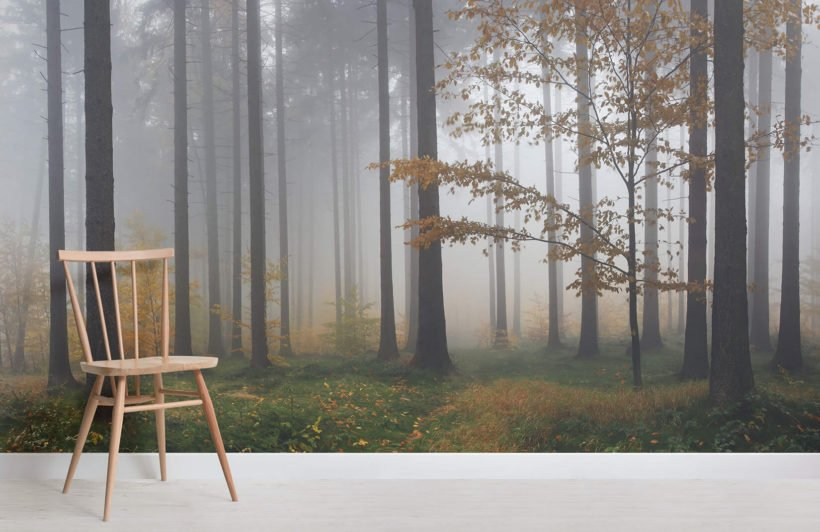 autumn-mist-forest-room-wall-murals