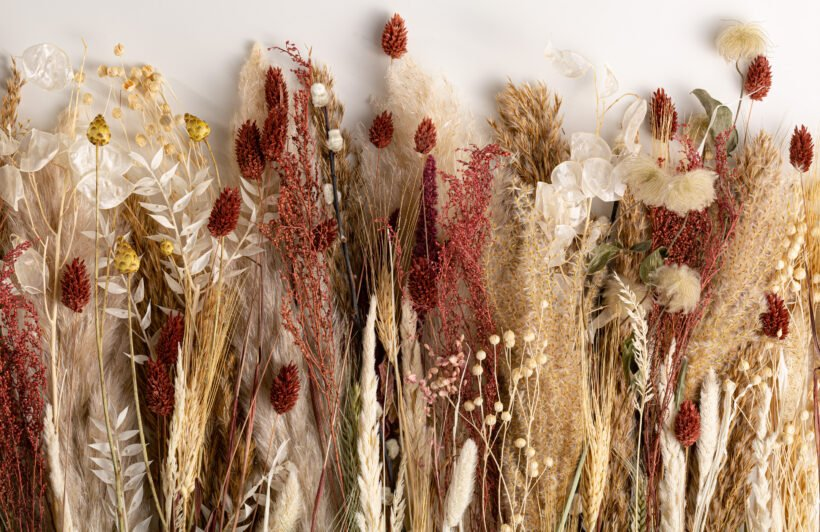 autumnal-dried-flowers-wallpaper-mural
