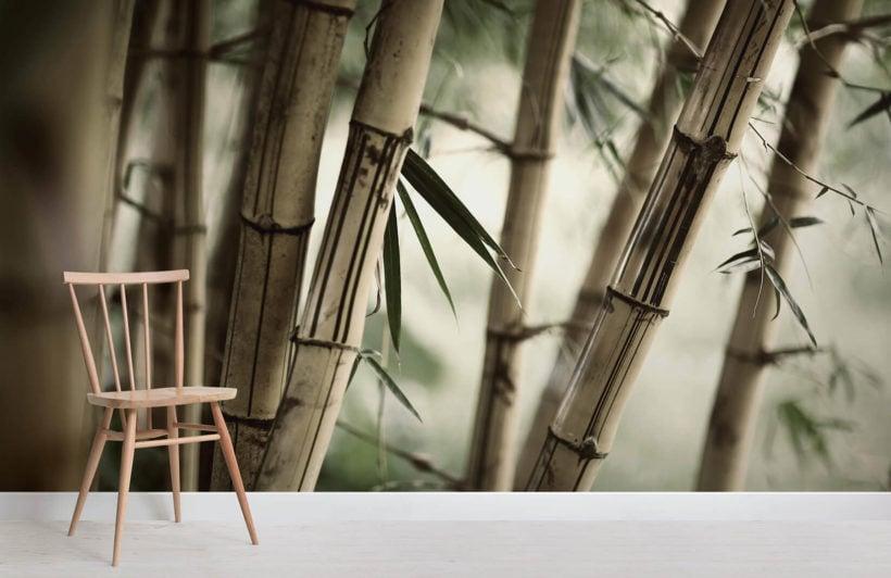 bamboo-jungle-room-1-wall-murals