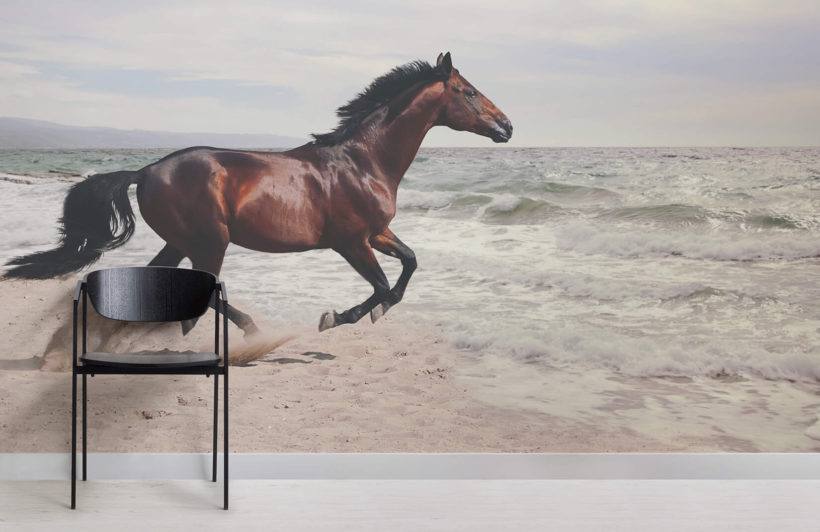 bay-horse-animal-room-wall-murals