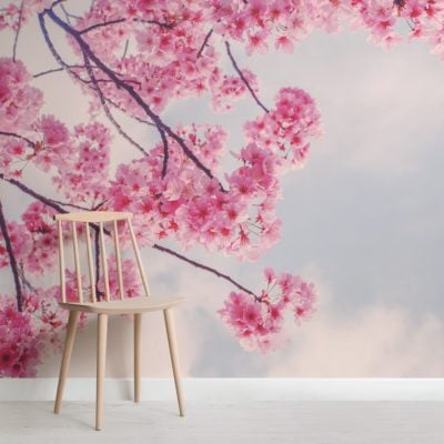 beautiful cherry blossom branch wallpaper mural