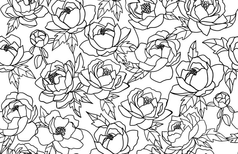 black and white line drawing floral pattern wallpaper mural