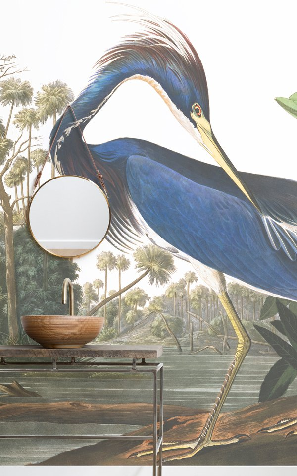 Blue Heron by J.J. Audubon Wallpaper Mural Image