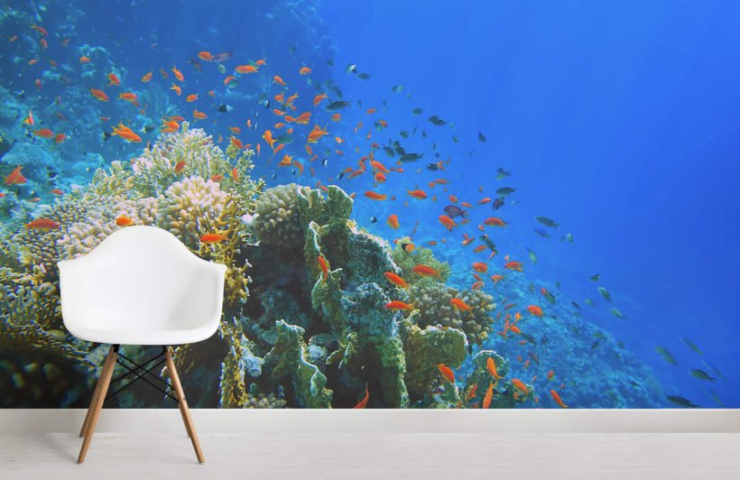 bright-coral-underwater-room-wall-murals