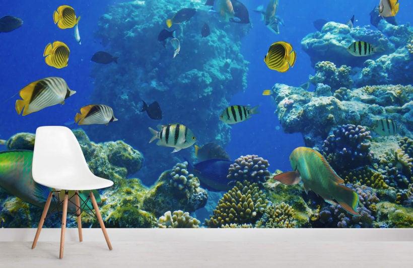 busy-reef-underwater-room-wall-murals