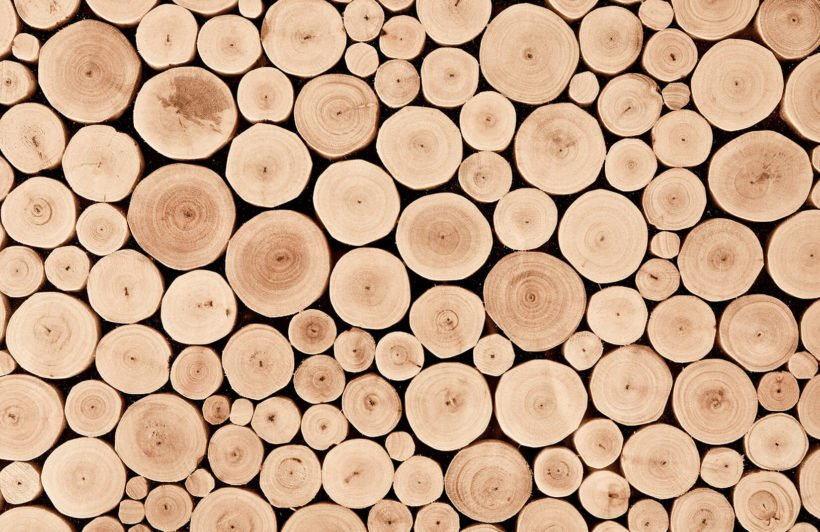 chopped-beech-log-textures-plain-wall-murals