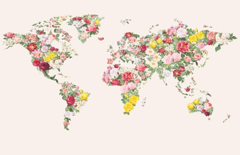 colourful abstract vintage flower world map wallpaper mural