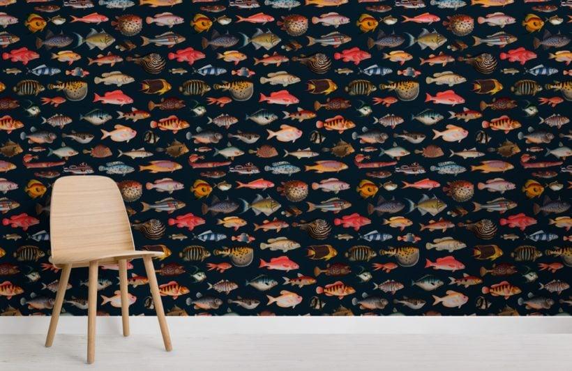colourful fish curiosities pattern wallpaper mural