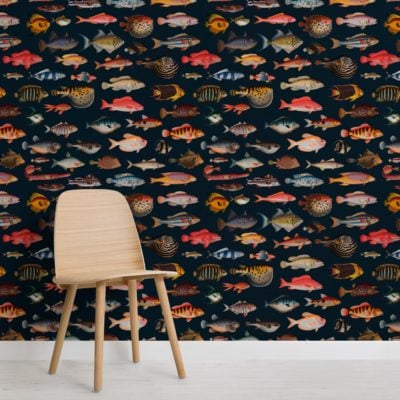 colourful fish curiosities pattern wallpaper mural