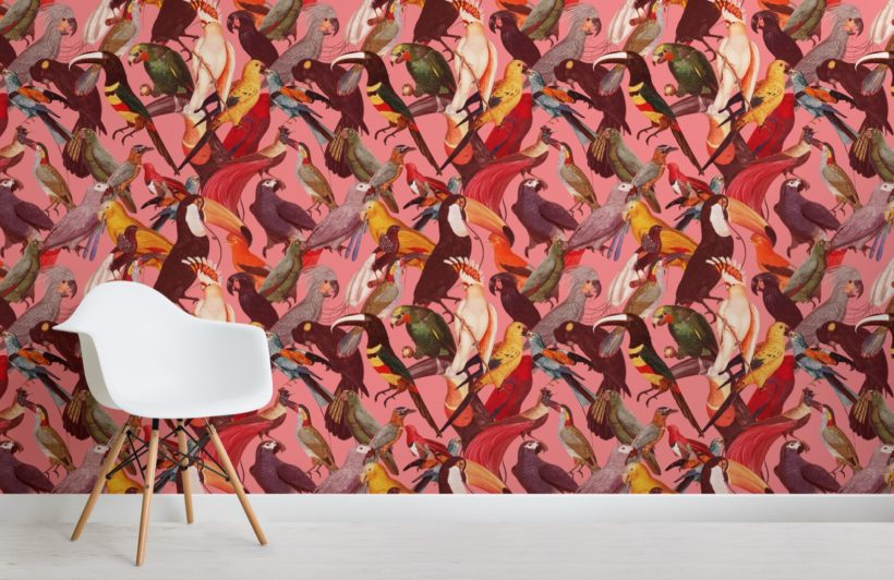 colourful tropical bird pattern wallpaper mural