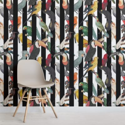 colourful tropical birds and stripes pattern wallpaper mural
