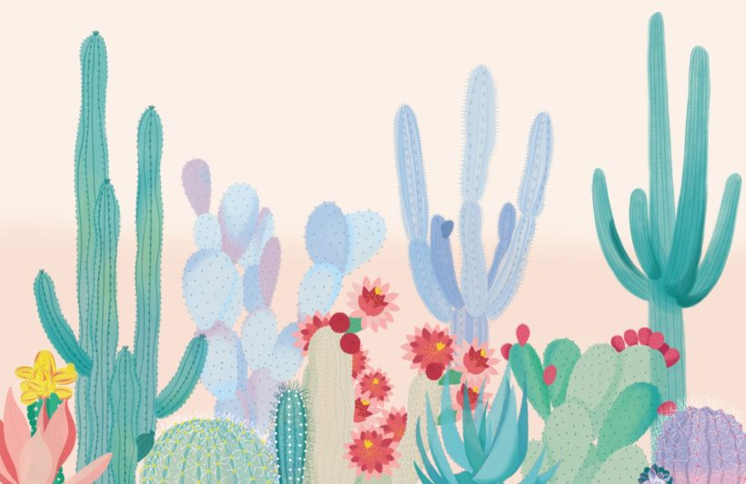 cute colourful cactus flower wallpaper mural