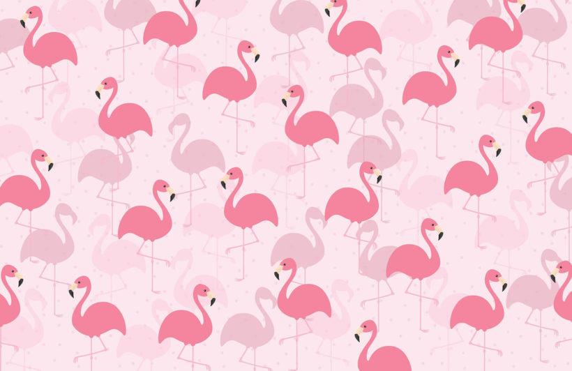 flamingo fancy-kids-plain-wall mural-kj
