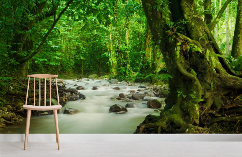 flowing-brook-jungle-room-wall-murals
