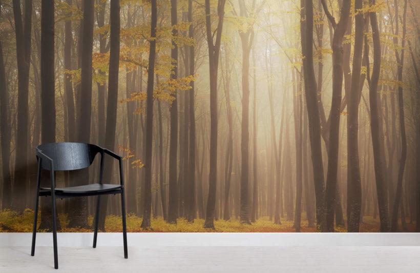 golden-mist-forest-room-wall-murals