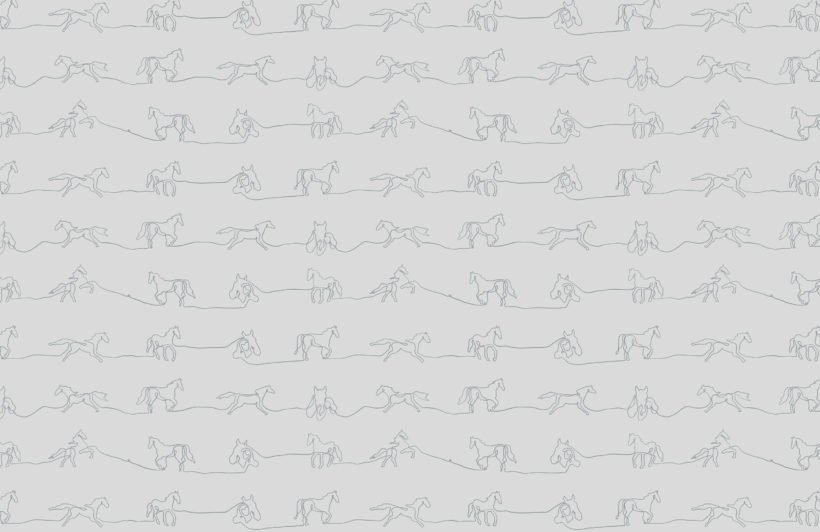 gray line drawing horse pattern wallpaper mural