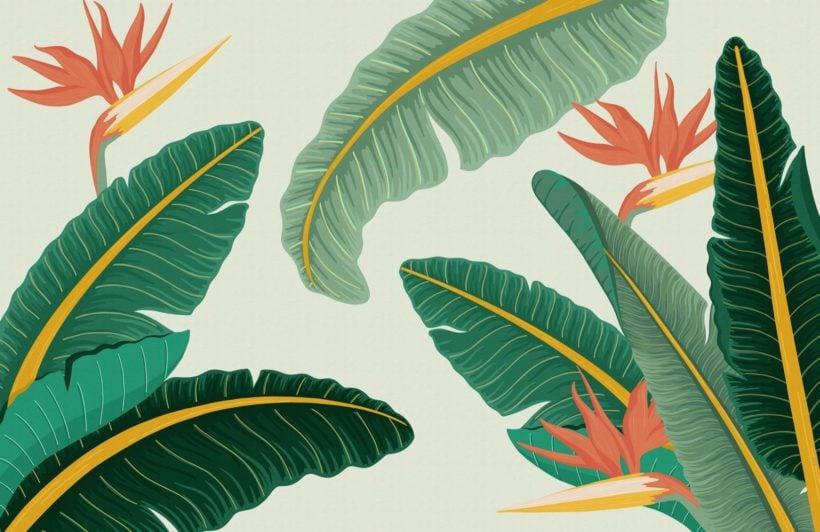 green-banana-leaf-bird-of-paradise-tropical-wallpaper-mural