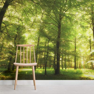 green-oak-forest-mural-wallpaper-square-wall-murals
