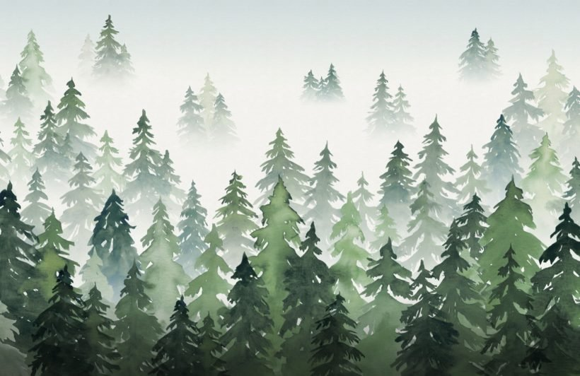 green watercolour forest tree silhouette wallpaper mural