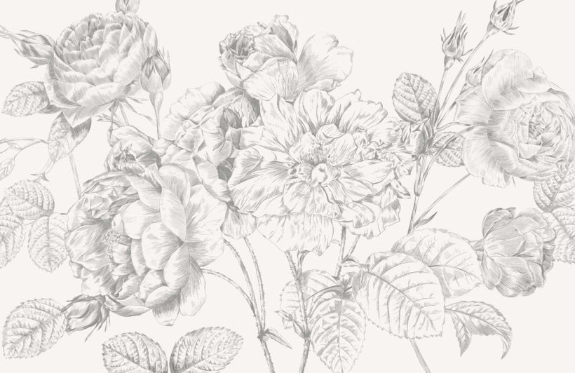 grey large illustrated roses wallpaper mural