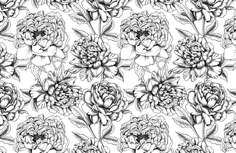 illustrated-floral-colour-in-wallpaper-plain-wall-mural