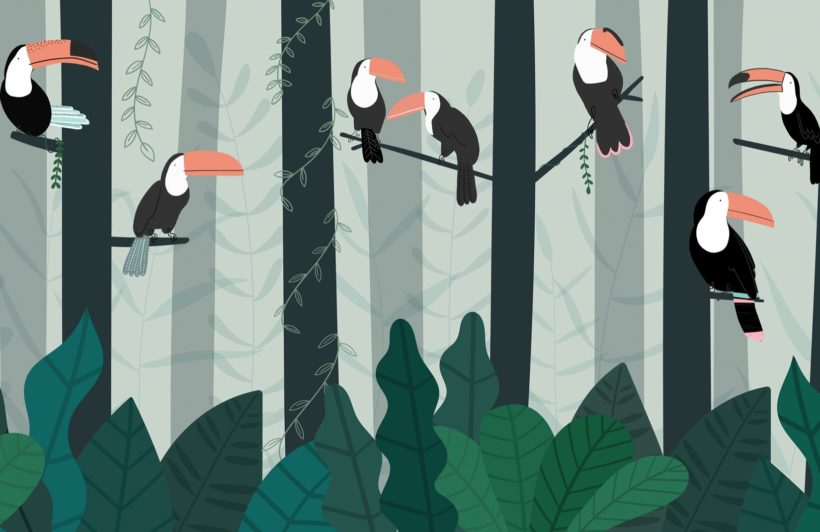 illustrated-toucan-rainforest-canopy-wallpaper-mural