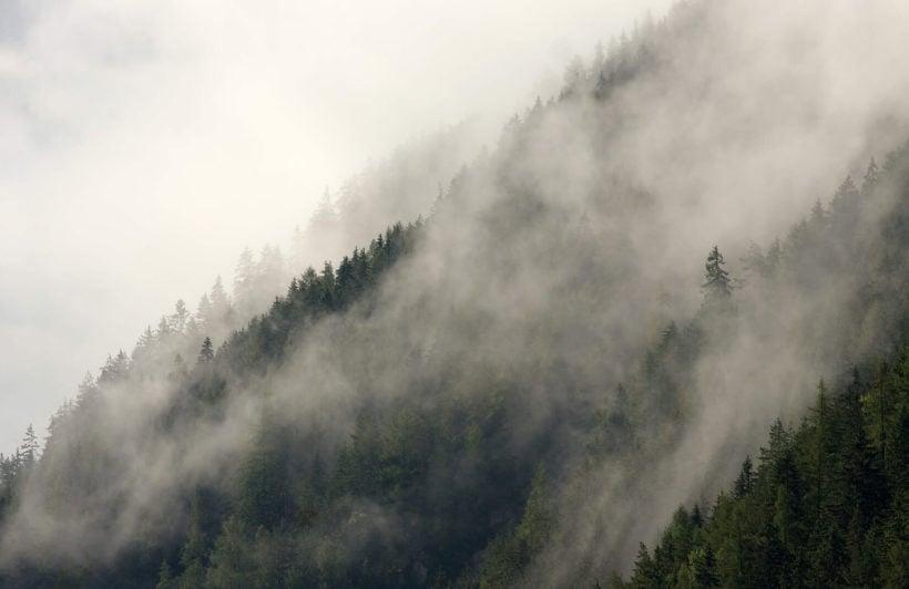 misty-hills-plain-wall-mural