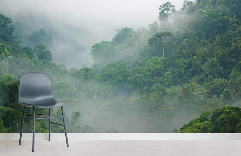 misty-rainforest-room-wall-murals