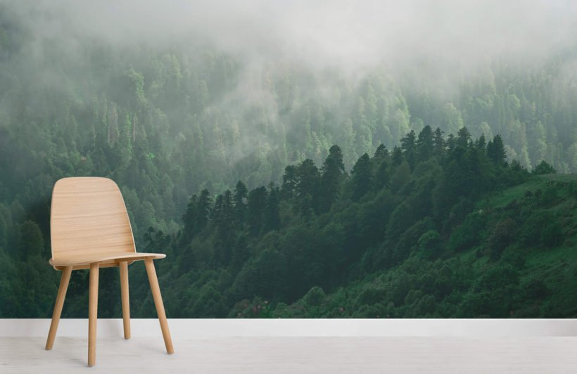 misty-valley-forests-room-wall-murals