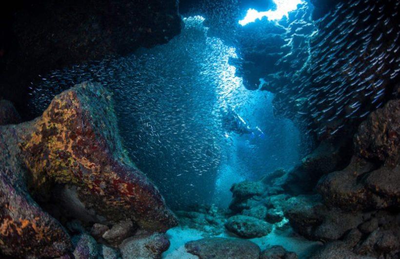 ocean-crevice-underwater_-plain-2-825x535