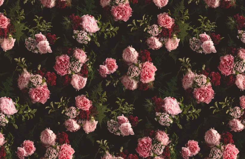 pink and black dark moody pattern floral wallpaper mural