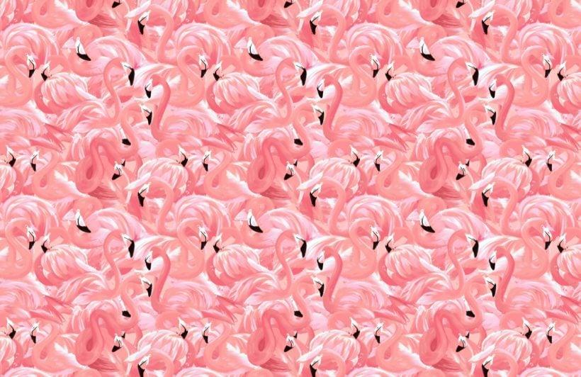 pink flamingo bird pattern wallpaper mural