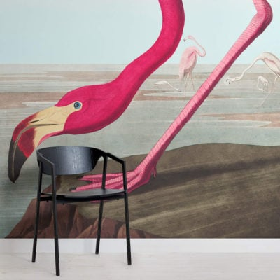 pink-flamingo-square