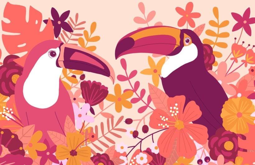 pink illustrated toucan bird wallpaper mural
