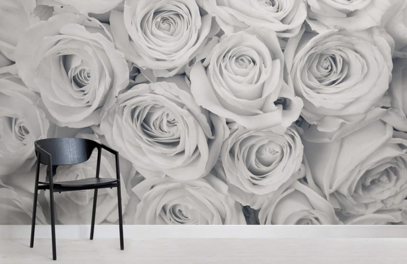 rose-mist-flower-room-wall-murals