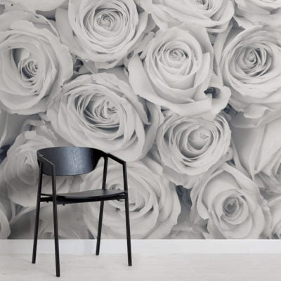 rose-mist-flower-square-wall-murals