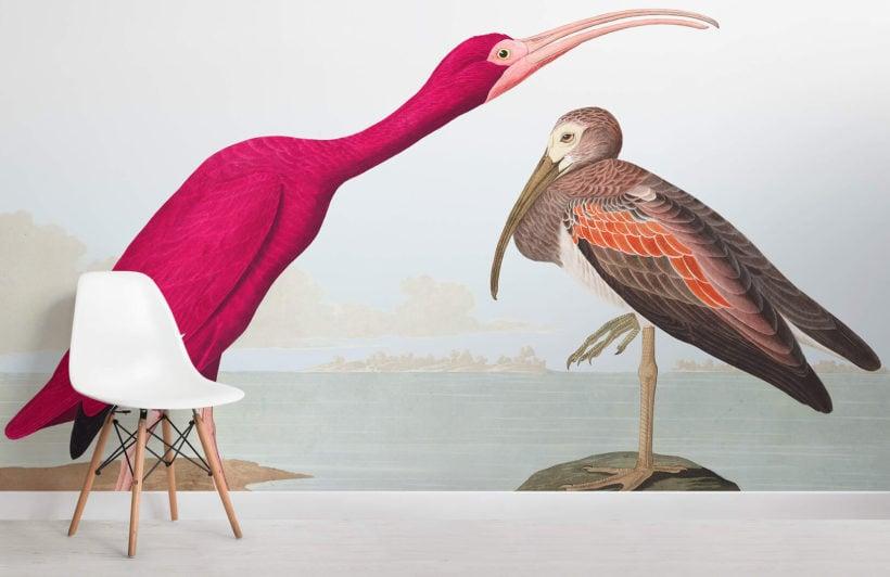 scarlet ibis chair