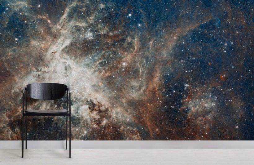 tarantula-nebula-space-room-wall-murals