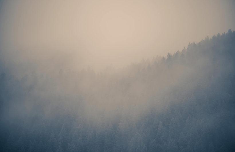 through-the-clouds-forest-plain-wall-murals