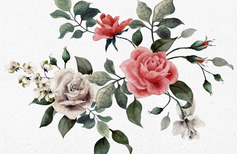 vintage-red-white-roses-flower-plain-wall-murals